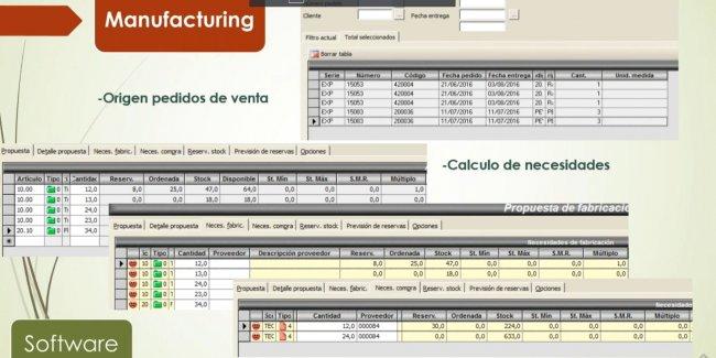 ERP para Fabricación e Industria. 26 demos y un experto. [Informe Especial]