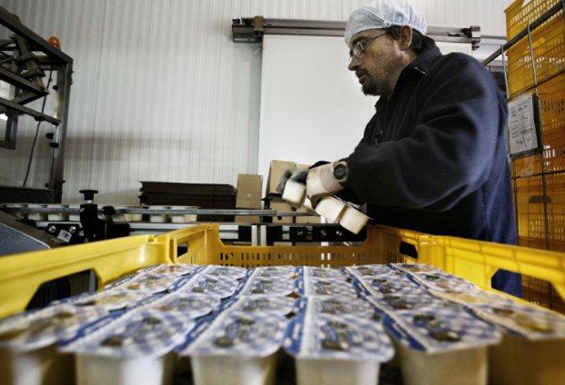Productor de yogures y lácteos español selecciona ERP Infor M3