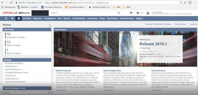 Netsuite para Servicios Profesionales [Intro y demo]