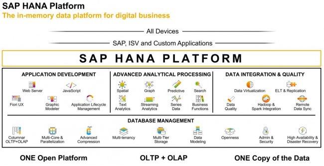 SAP HANA Platform. Informe Especial [PDF 20 págs.] Por IECISA e IT-Spain.net