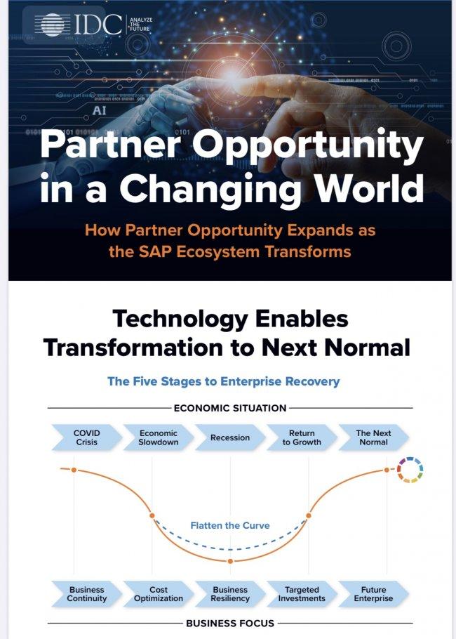 Los partners de SAP podrían duplicar sus ingresos en 2024, predice un estudio